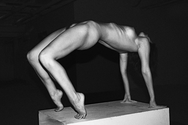 Bridge Artistic Nude Photo by Photographer Robert L Person