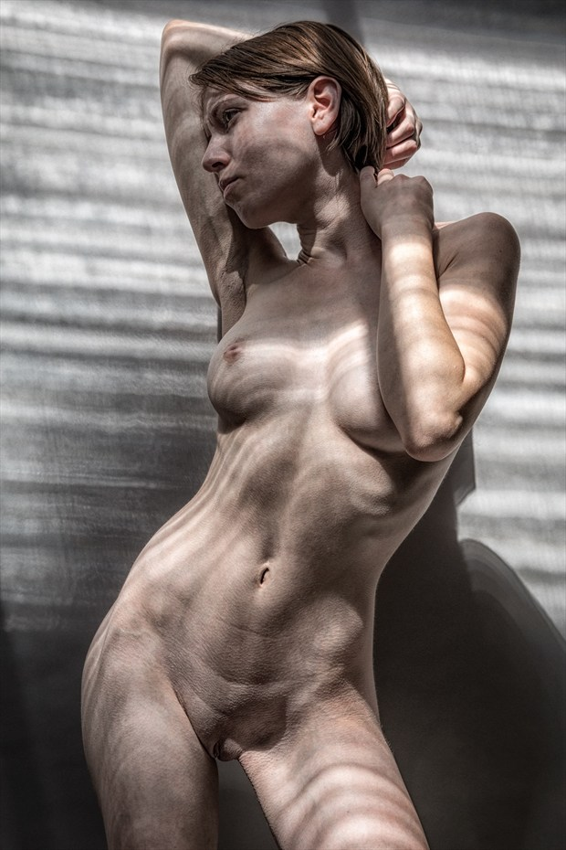 Brindled by the Light Artistic Nude Photo by Photographer rick jolson