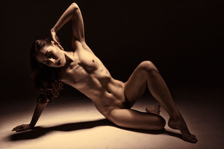 Bronzed Artistic Nude Photo by Photographer Dream Digital Photog