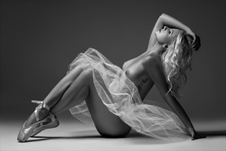 Bryn Artistic Nude Photo by Photographer theColbyFiles