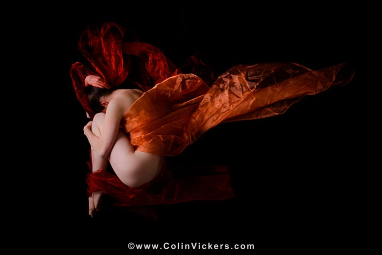 Butterfly Artistic Nude Artwork by Photographer Dr Colin Vickers