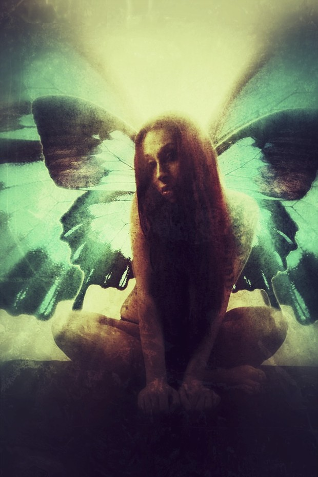 Butterfly LIght Vintage Style Artwork by Artist David Bollt