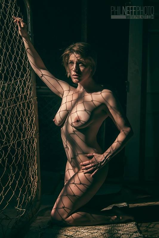 Cage of Shadows Artistic Nude Photo by Model Tricia DeAnne