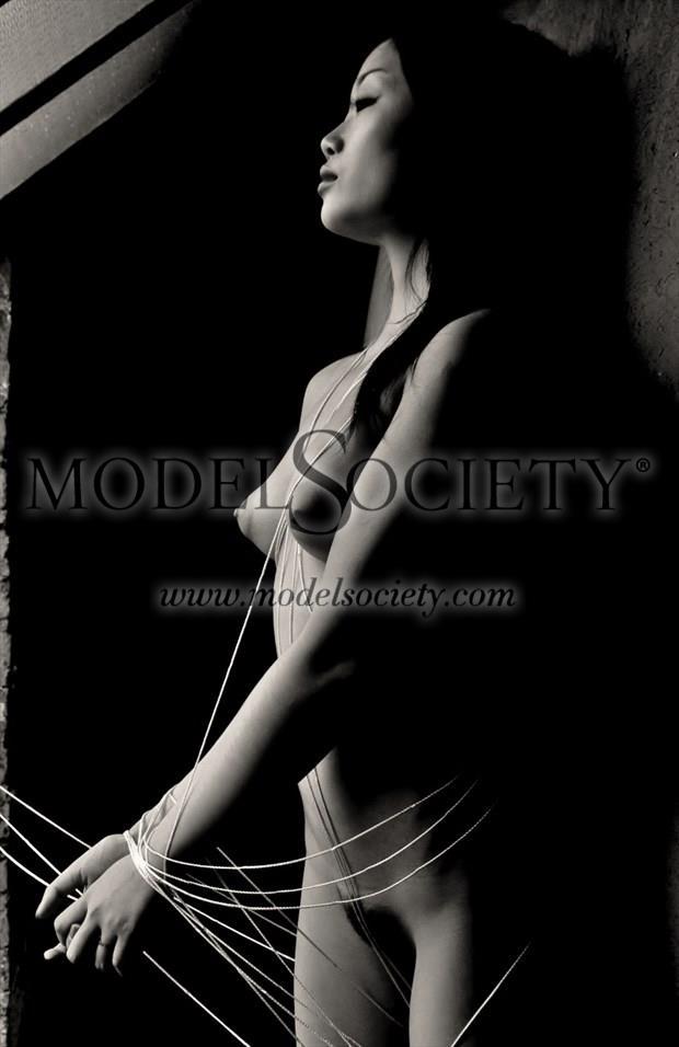 Calm Entanglement Artistic Nude Artwork by Photographer Robert Lee Bernard