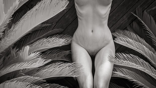 Cameron Attree Artistic Nude Photo by Model Soph