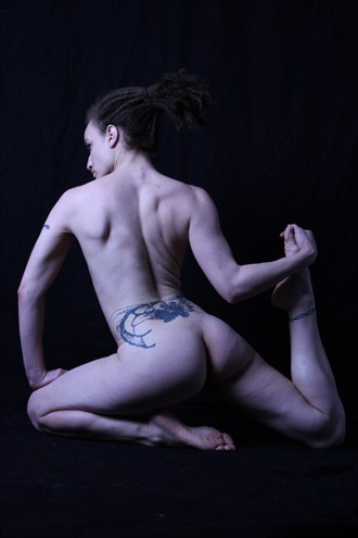 Can you do this Artistic Nude Artwork by Photographer Lavaughn