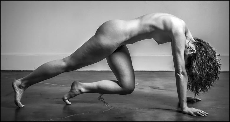 Candace Nirvana Artistic Nude Photo by Photographer J Photoart
