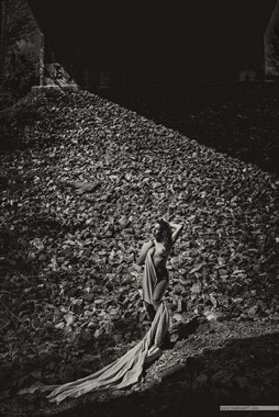 Canvas, rocks Reece Artistic Nude Photo by Photographer MadiouART