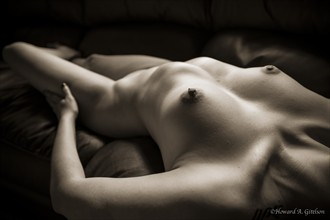 Cassie's Torso Artistic Nude Photo by Photographer HGitel