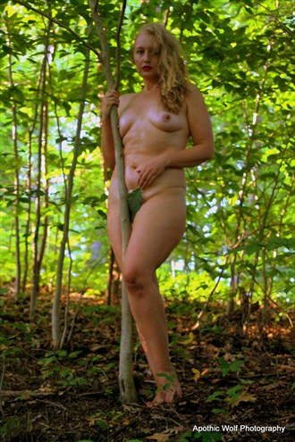 Cassie Artistic Nude Artwork by Photographer A W Photography