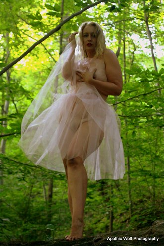Cassie Nature Artwork by Photographer A W Photography
