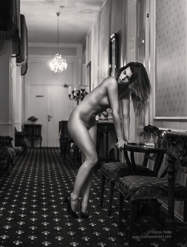 Castle Dreams V Artistic Nude Photo by Photographer CommandoArt
