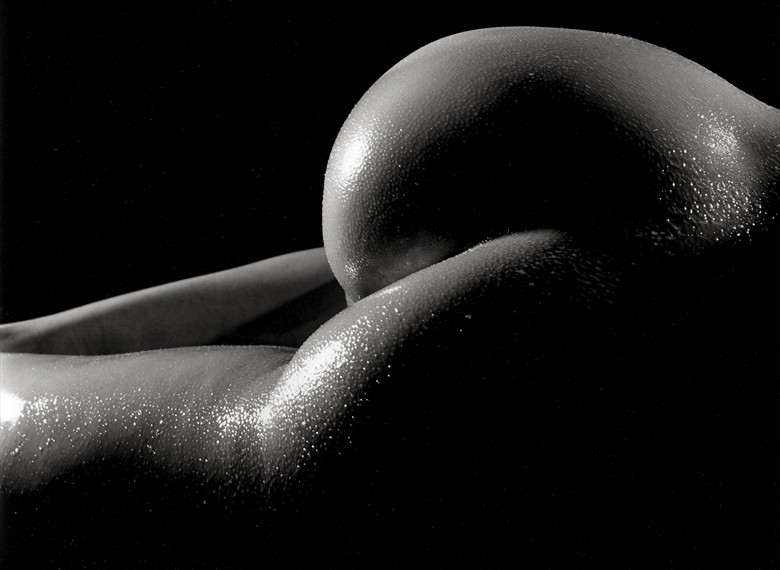 Cat 1 Artistic Nude Photo by Photographer Lottg