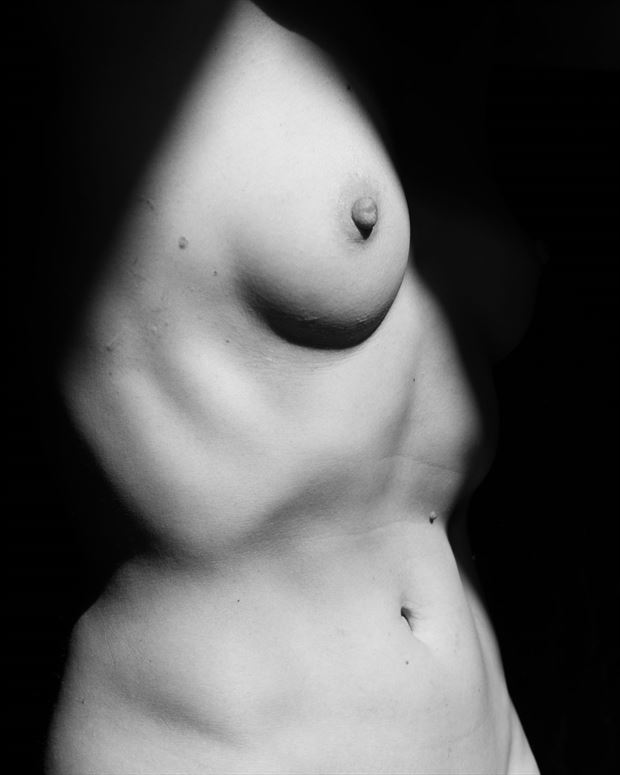Cat Shadow 1 Artistic Nude Photo by Photographer 2photographics