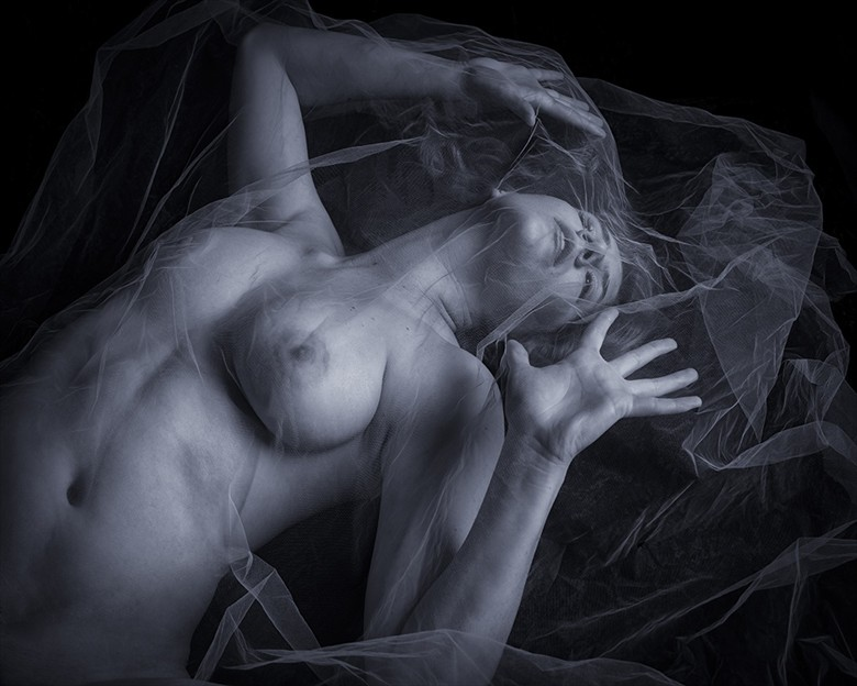 Caught Within the Web of Ecstasy  Artistic Nude Photo by Photographer CalidaVision