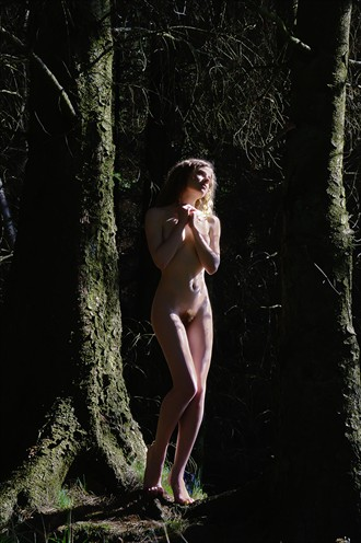 Caught in the sunlight Artistic Nude Photo by Photographer pmurph