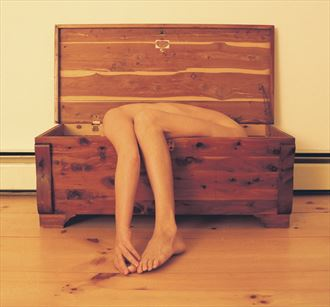 Cedar Artistic Nude Photo by Artist STORM_SELF