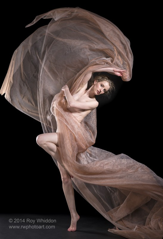 Centre Stage Artistic Nude Photo by Photographer Roy Whiddon