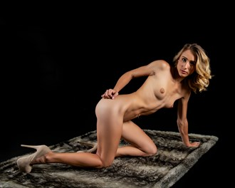 Chelsea on the Faux Fur... Artistic Nude Photo by Photographer CC Art Nudes