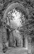 Church Ruins   Tree Of Heaven Artistic Nude Photo by Photographer Richard Maxim