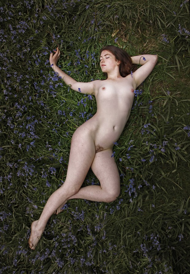 Ciara and Bluebells Artistic Nude Photo by Photographer Douglas Ross