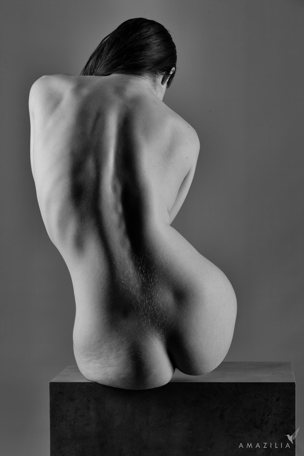 Classic Art Nude Artistic Nude Photo by Photographer Amazilia Photography