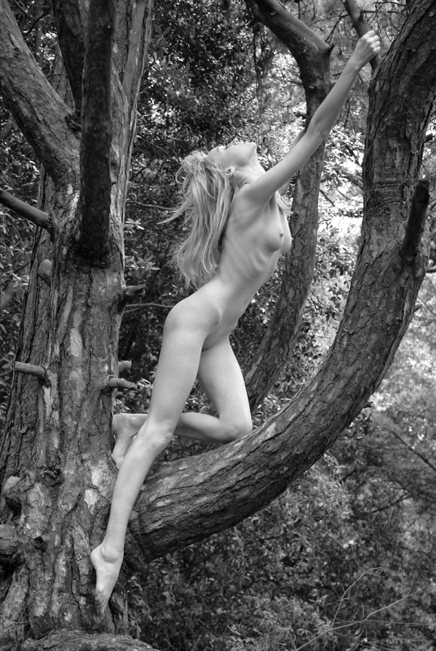 Climbing Iveta Artistic Nude Photo by Photographer Roger Mann