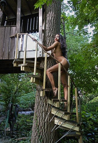 Climbing to treehouse Artistic Nude Photo by Photographer Larry