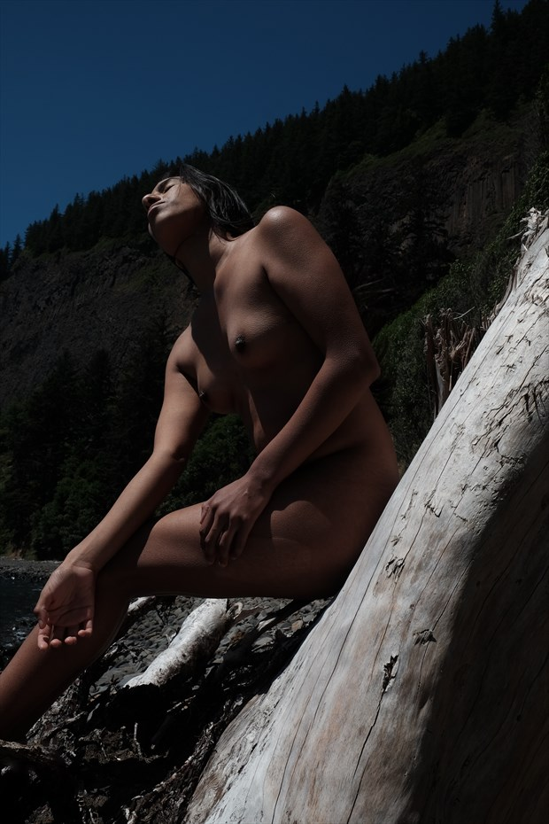 Coast Drifter  Artistic Nude Artwork by Model Shortyy