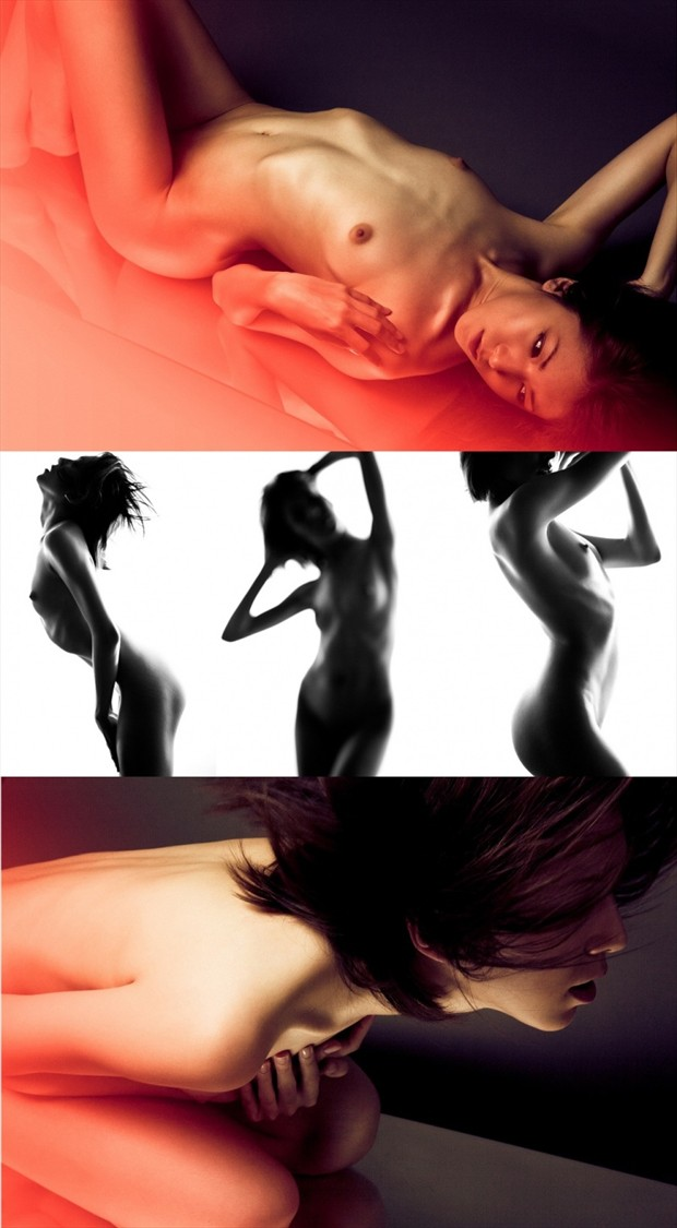 Collage Artistic Nude Photo by Model IDiivil