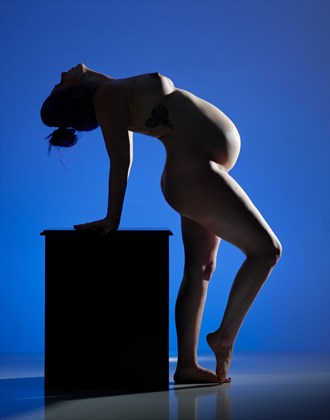 Colorful Expectations Artistic Nude Photo by Photographer Craig Stocks Arts