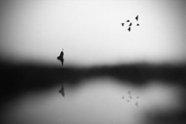 Conscience Surreal Photo by Photographer Hengki Lee