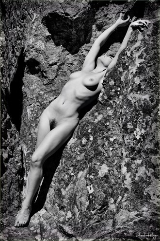 Contrasts Artistic Nude Photo by Photographer Mark Hillyer