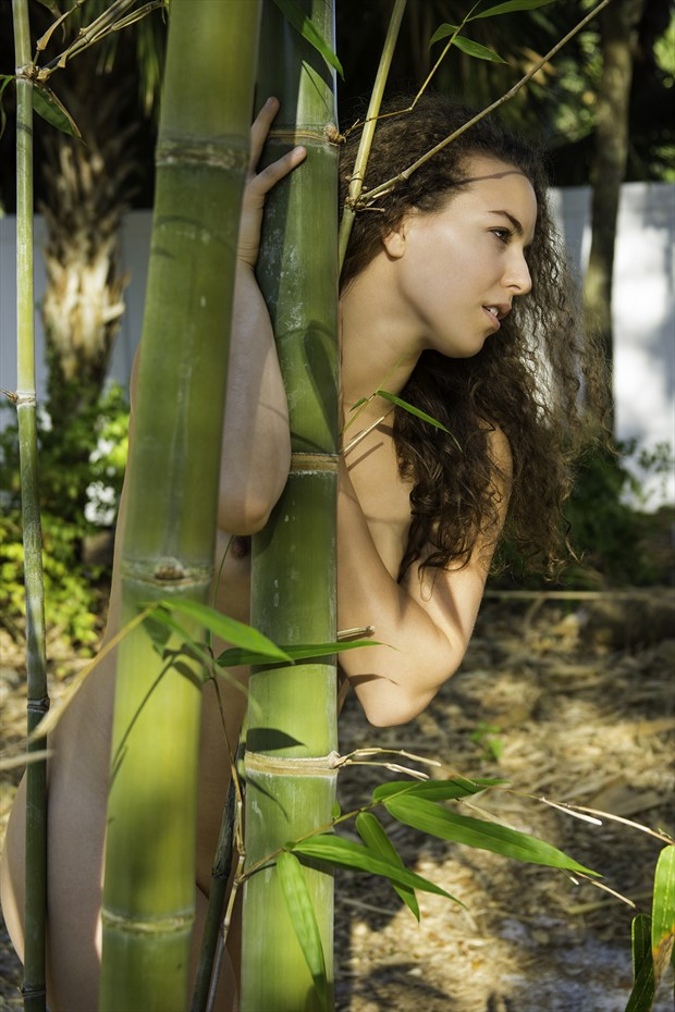 Cosmira peeking from bamboo Artistic Nude Photo by Photographer Chris Gursky