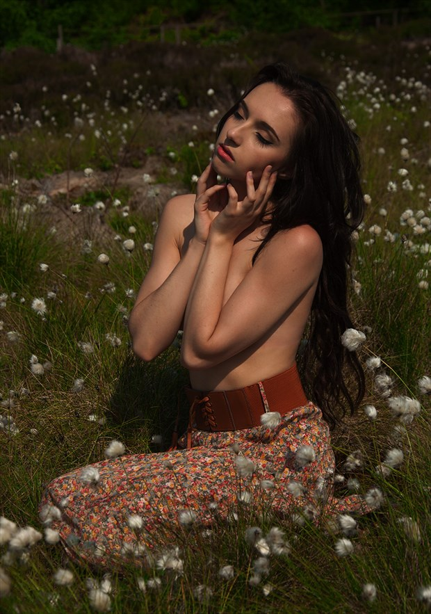 Cotton Grass Beauty Nature Photo by Photographer Calandra Images