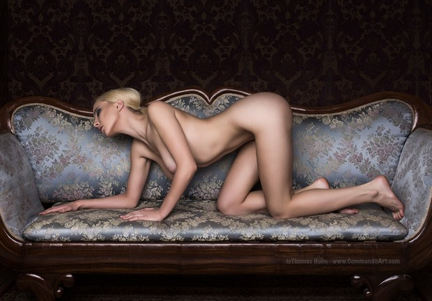 Couch cat Artistic Nude Photo by Photographer CommandoArt