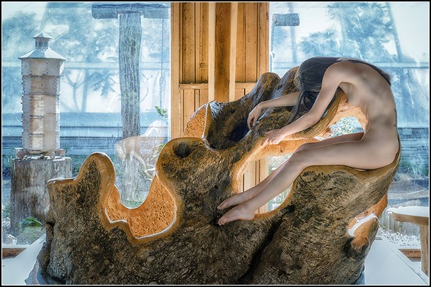 Curling Artistic Nude Photo by Photographer Magicc Imagery