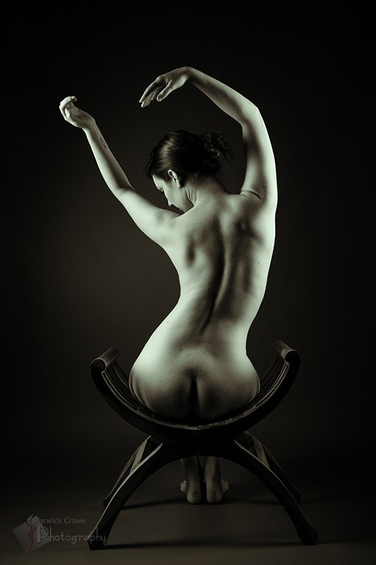 Curves Artistic Nude Photo by Photographer Incidental Pixel