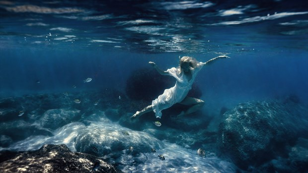 Dance under water Nature Photo by Photographer dml