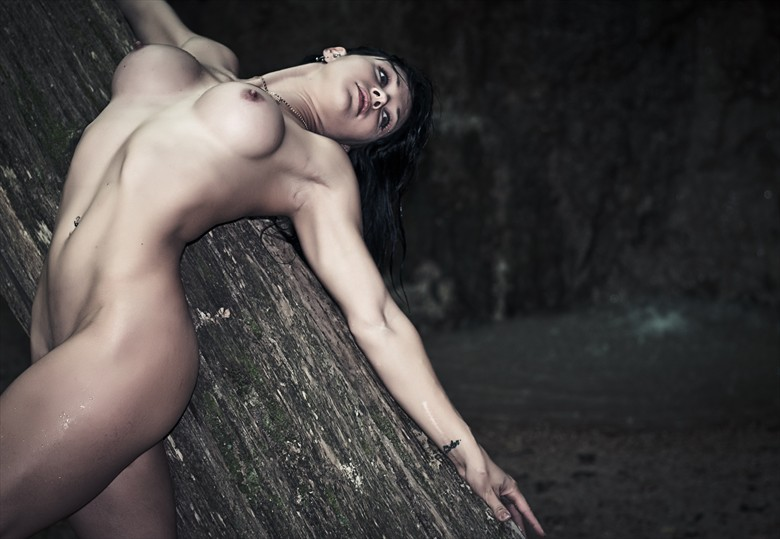 Dancer and Tree Artistic Nude Photo by Photographer Beauty is Light