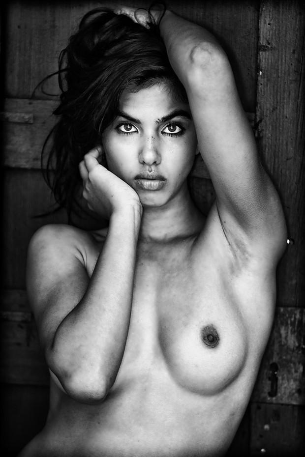 Danielle Artistic Nude Photo by Photographer DanWarnerPhotography