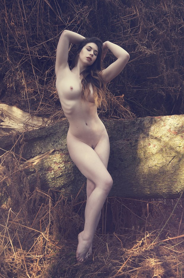 Dappled Light Artistic Nude Photo by Photographer Calandra Images