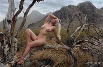 Deadwood Artistic Nude Photo by Photographer AJVitaroPhoto