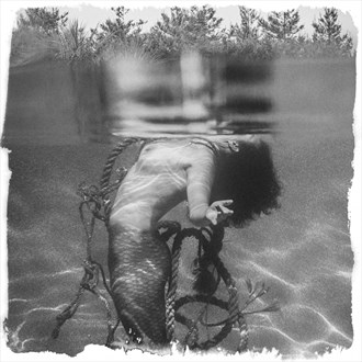 Death of a Mermaid Artistic Nude Photo by Photographer CalidaVision