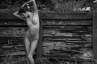 Decaying wood Artistic Nude Photo by Photographer Gibson
