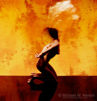 Deena's Hair Artistic Nude Photo by Photographer Michael Nelson