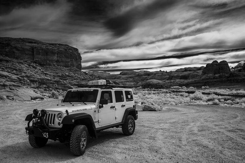 Desert Adventurer Nature Photo by Photographer MickeySchwartz