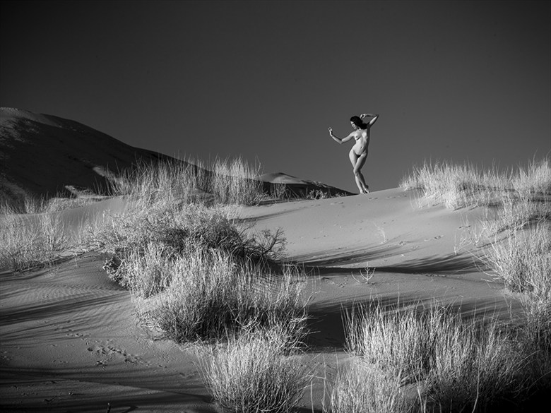 Desert Nude 10 Artistic Nude Photo by Photographer blakedietersphoto