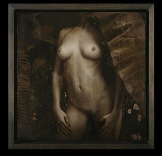Desire Artistic Nude Photo by Artist Peter Michelena