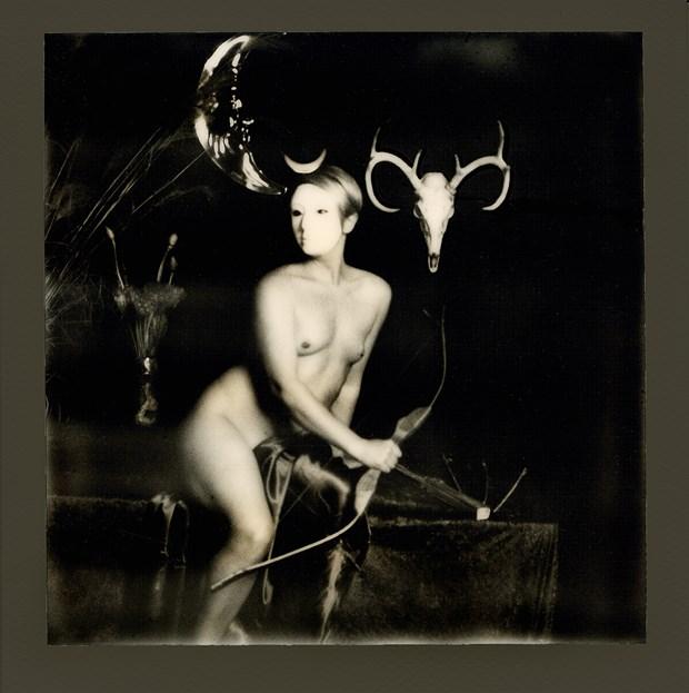 Diana Artistic Nude Photo by Photographer sballance